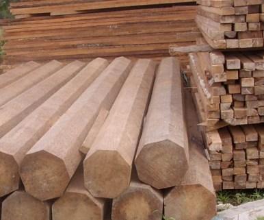 Supplier Kayu Kelapa_2