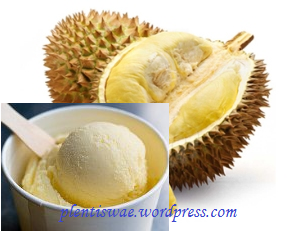 Ice Cream Durian Asli